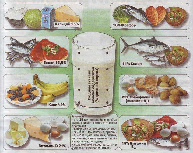 здоровое питание зож